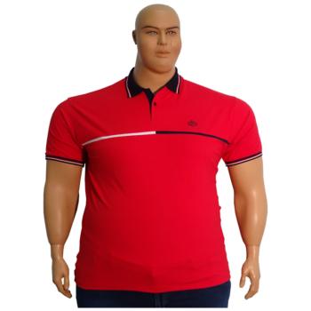 T. Piros, sötétkék galléros rövid ujjú póló