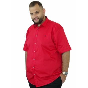 B. Piros mintás rövid ujjú ing