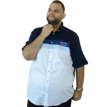 B. Sötétkék-fehér rövid ujjú ing