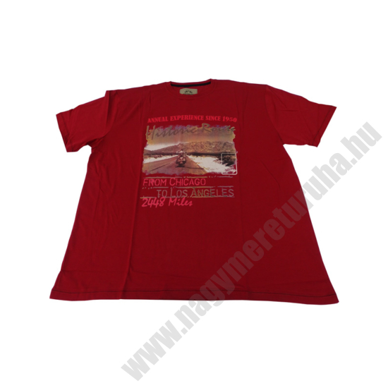 p-piros-historic-mintas-rovid-ujju-polo2