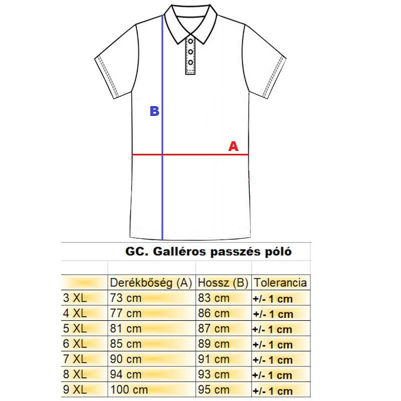 gchief_galleros_polo_passzes