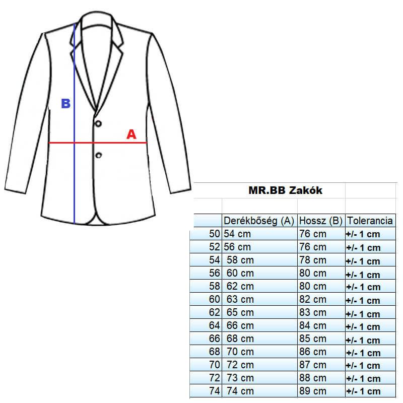mr-bb-zako2