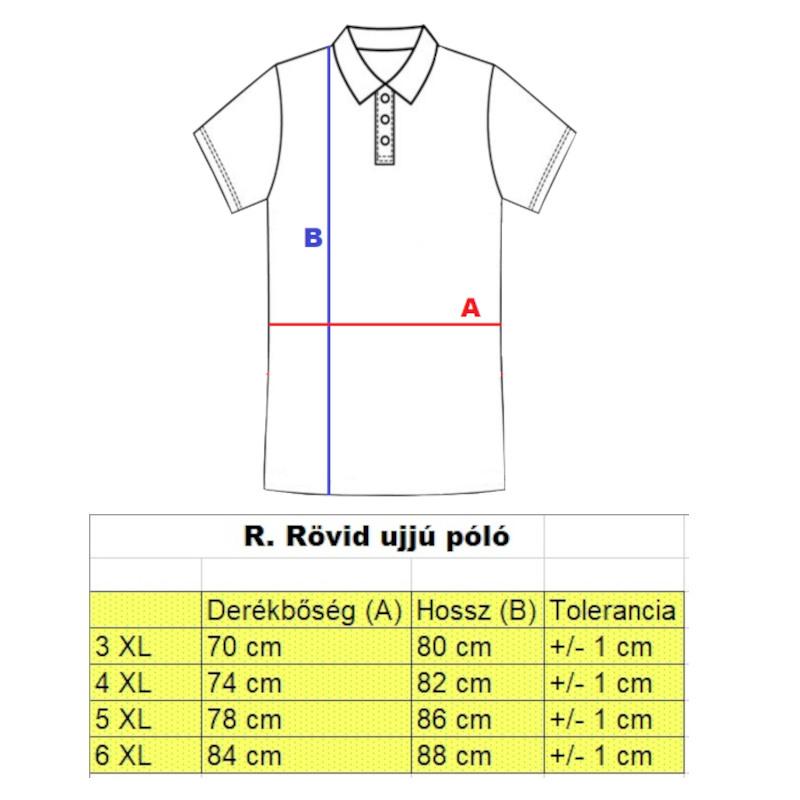 r-nagymeretu-galleros-rovid-ujju-polo2