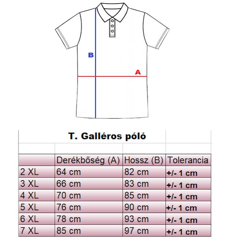 t-galleros-polo-merettablazat1